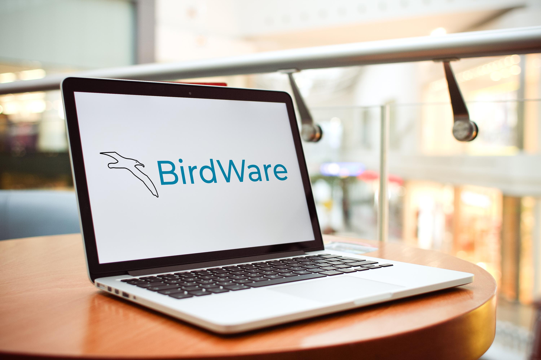 Lyseblåt fugle logo med flyvende albatros på computerskærm